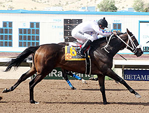Ol Winderinker Who wins the San Juan Commissioners Handicap.