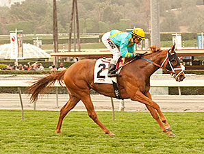 On the Backstreets wins the 2014 Sweet Life Stakes.