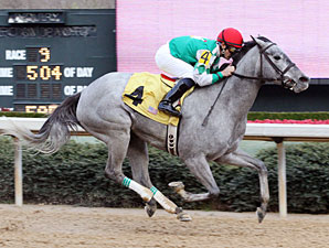 One Smokin' Lady wins the 2010 Spring Fever Stakes.