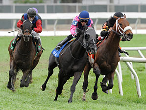 Optimizer (right) makes his move to win the 2013 Fair Grounds Handicap.