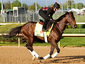 Orb gallops at Churchill Downs.