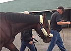 Kentucky Derby winner Orb Leaves Churchill Downs