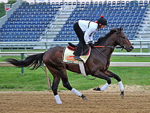 Orb - Pimlico May 16, 2013