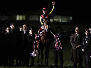 Orfevre's retirement ceremony 12/22/2013.