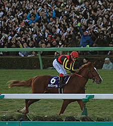 Orfevre wins the Arima Kinen (The Grand Prix) in Japan.