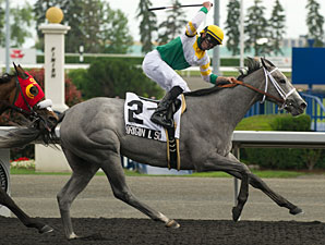 Original Script wins the Bison City Stakes.