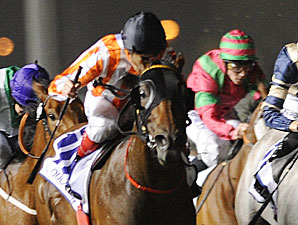 Ortensia wins the Al Quoz Sprint.