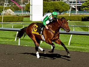 Outside Nashville wins the 2012 Golden Nugget.