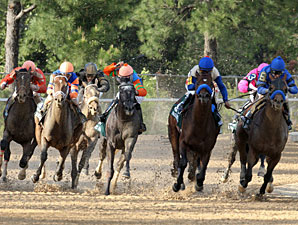 Overanalyze wins the 2013 Arkansas Derby.