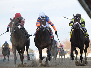 Overanalyze wins the 2012 Remsen.