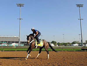 Oxbow - Churchill Downs, May 1, 2013.
