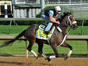 Oxbow - Churchill Downs, May 2, 2013.