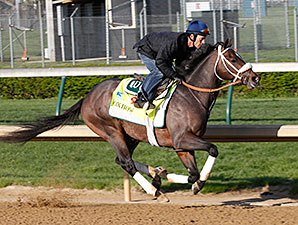 Oxbow and Gary Stevens work at Churchill Downs 4/21/2013.
