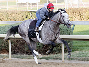 Paddy O'Prado works at Churchill Downs on Oct. 23, 2010.