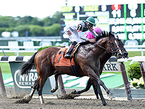Palace wins the 2014 True North Stakes.