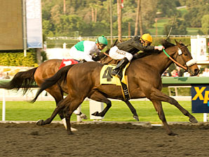 Papa Clem wins the 2010 San Fernando.