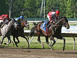 Partyallnightlong wins the 2014 John J. Reilly Handicap.