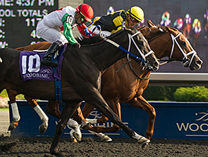 Paso Doble wins the 2014 Overskate Stakes.