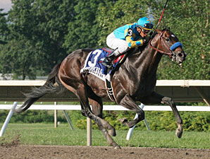 Paynter wins the Haskell Invitational.