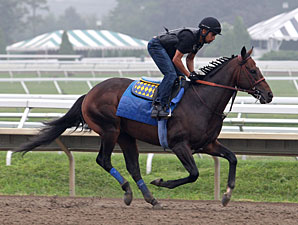 Paynter - Monmouth Park, July 28, 2012.