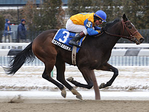 Peppi Knows wins the 2010 Whirlaway.
