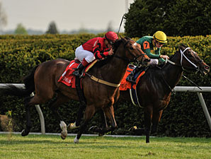Perfect Officer (left) wins the 2012 Shakertown Stakes.