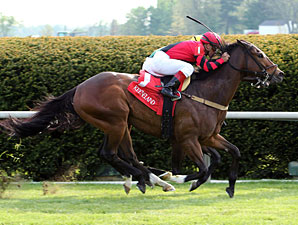 Perfect Officer wins the 2012 Shakertown Stakes.