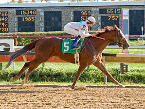 Peyote Patty wins the 2011 Illini Princess.