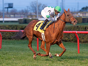 Peyote Patty wins the 2012 Illini Princess.