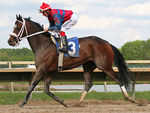 Phil Dancer wins the 2012 Philmont Stakes.
