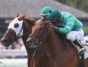 Philly Ace wins the 2012 Alphabet Soup.