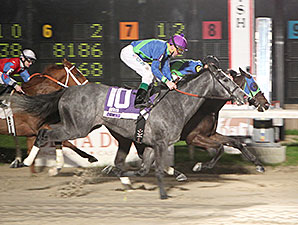 Pioneering Native wins the 2014 B-Connected Stakes.