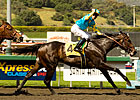 Pioneerof the Nile