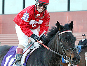 Pistolpackinpenny wins the 2015 Downthedustyroad Breeders Stakes.