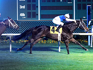 Pleasantly Blessed wins the 2012 Jersey Lilly Stakes.