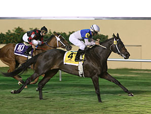 Pleasantly Blessed wins the 2011 Ricks Memorial Stakes.