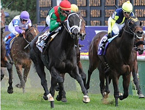 Pluck wins the 2010 Breeders' Cup Juvenile Turf.