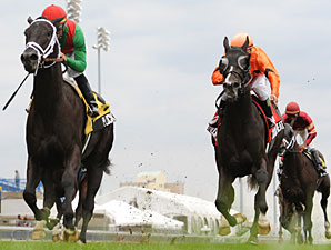 Pluck wins the 2010 Summer Stakes.