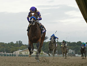 Plum Pretty wins the 2011 Cotillion.