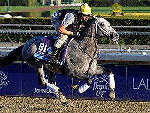 Poker Player -  Breeders Cup - October 31, 2013