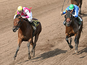 Polar Plunge wins the 2012 Minnesota Distaff Sprint Championship.
