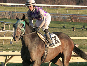 Pollard's Boy wins the 2011 Pennsylvania Nursery Stakes.