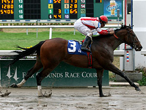 Populist Politics wins the 2010 LA Futurity - Colts and Geldings Division at Fair Grounds.