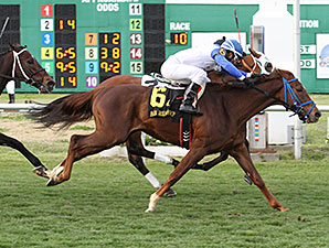 Potomac River wins the 2014 Fair Grounds Handicap.