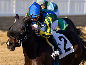 Potosina wins the 2011 Maryland Racing Media Stakes.
