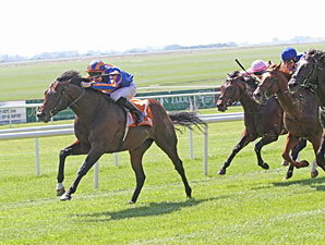 Power wins the 2012 Irish 2,000 Guineas.