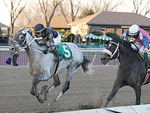 Praetereo wins the 2014 Valley Forge Stakes.