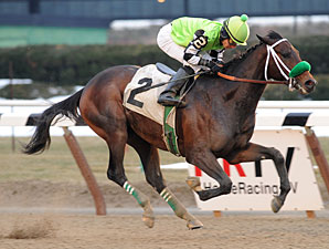 Preachintothedevil wins the 2011 Champagneforashley.