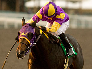 Premier Pegasus wins the 2010 Hollywood Prevue.