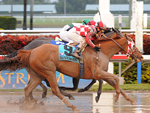 Pretty Prolific wins the 2010 Sugar Swirl.
